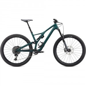 SPEC20 Stumpjumper ST LTD Downieville Carbon 29