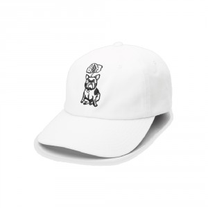 STONE WONDER DAD CAP
