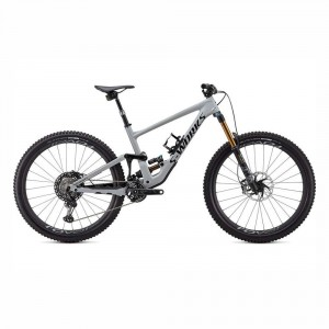 SPEC20 ENDURO SWORKS CARBON 29